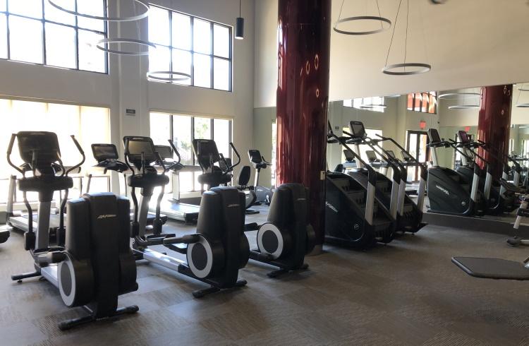 Elliptical Trainers in Gym